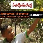 LQarance